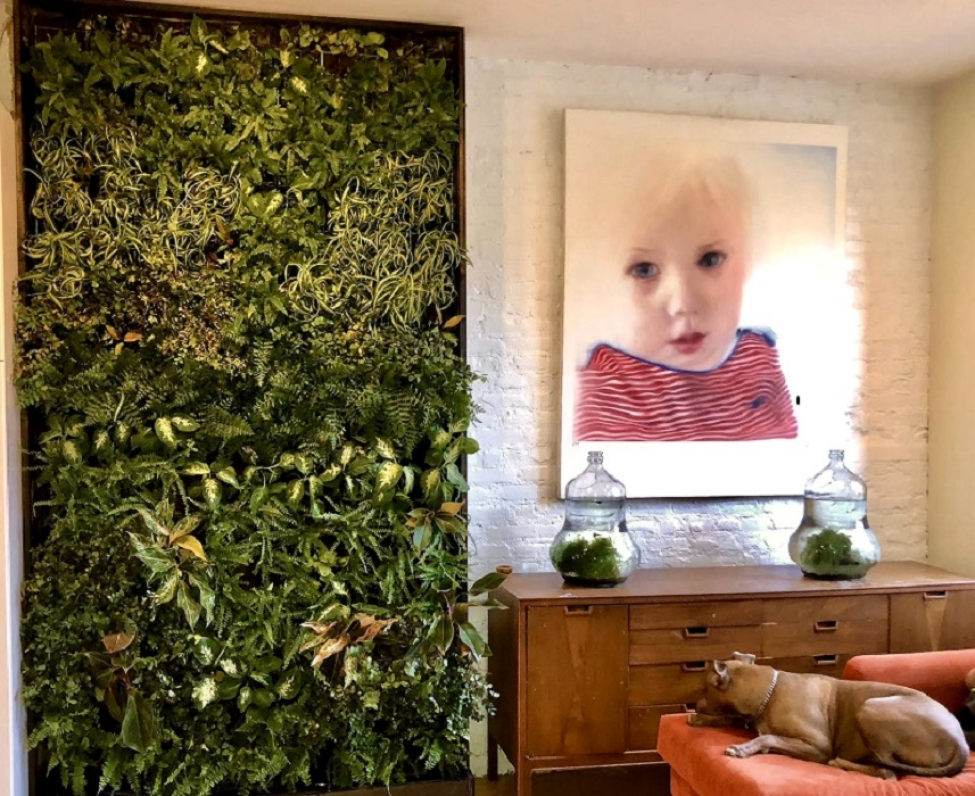Green Wall Adds Interest and Life to a Room